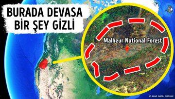 Ormanın İçinde Megalodondan Daha Büyük Bir Şey Saklanıyor