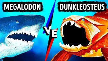 Megalodon, Tarihin En Güçlü Isırma Gücüne Sahip Balıkla Karşılaşsaydı Neler Olurdu?