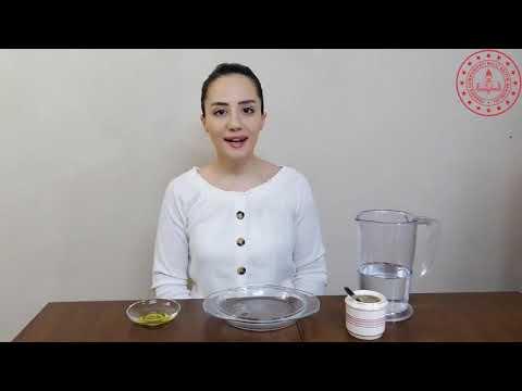 Kara Biber Deneyi Etkinlik Videosu